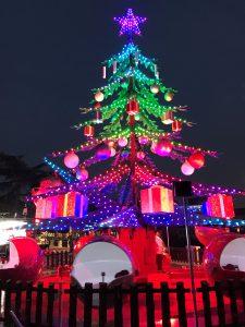 Stella Di Natale A Verona.Mercatini Di Natale A Verona Roberta Live Aloha
